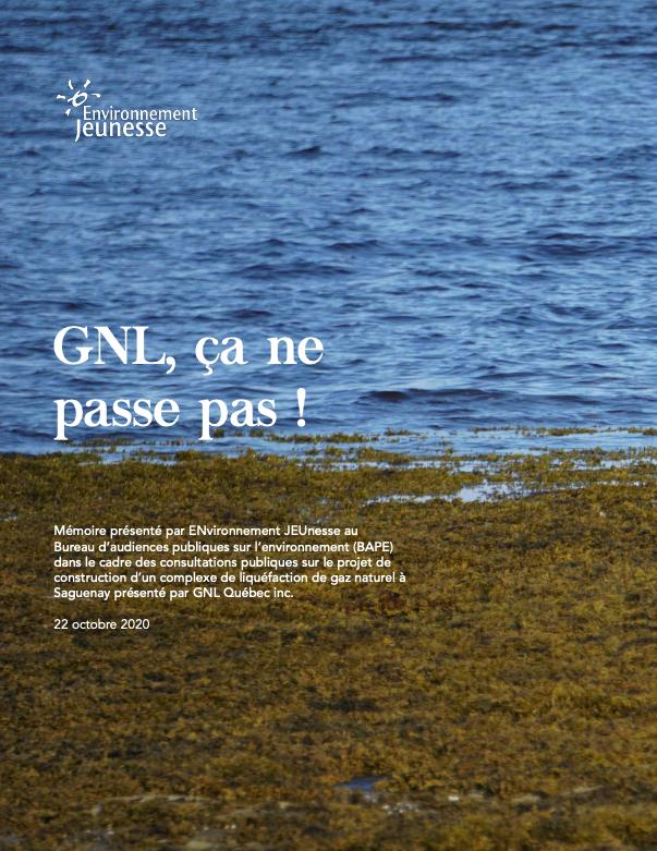 Vignette_Mémoire_ GNL